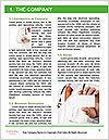 0000074103 Word Template - Page 3