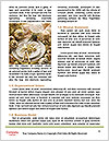 0000074111 Word Template - Page 4