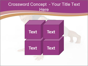 0000074117 PowerPoint Template - Slide 39