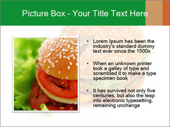 0000074118 PowerPoint Template - Slide 13