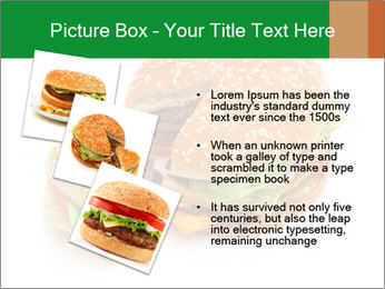 0000074118 PowerPoint Template - Slide 17