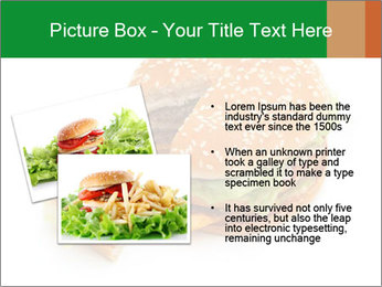 0000074118 PowerPoint Template - Slide 20