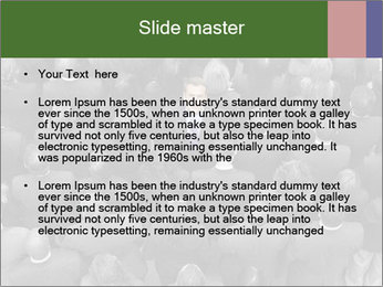 0000074124 PowerPoint Template - Slide 2