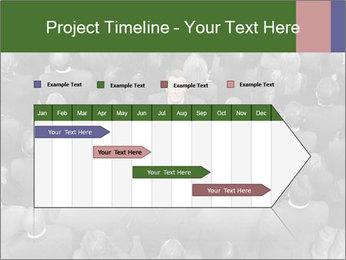 0000074124 PowerPoint Template - Slide 25