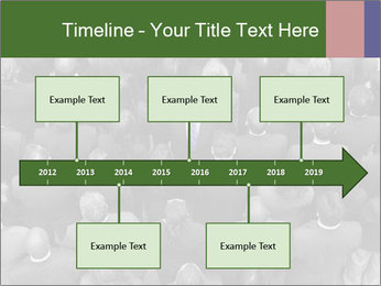 0000074124 PowerPoint Template - Slide 28