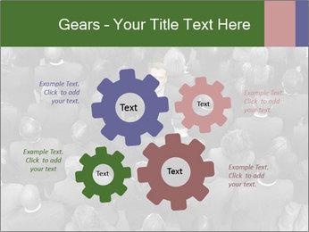 0000074124 PowerPoint Template - Slide 47