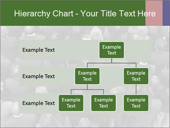 0000074124 PowerPoint Template - Slide 67