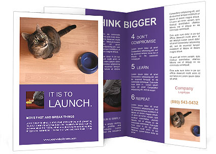 0000074125 Brochure Template