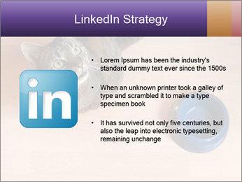 0000074125 PowerPoint Templates - Slide 12