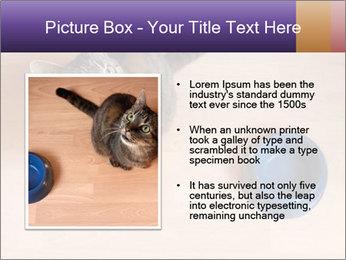 0000074125 PowerPoint Template - Slide 13