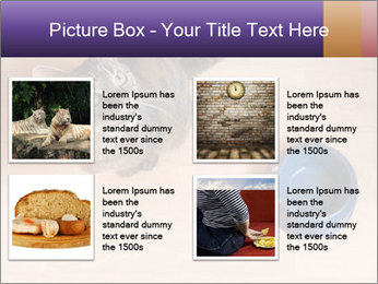 0000074125 PowerPoint Template - Slide 14