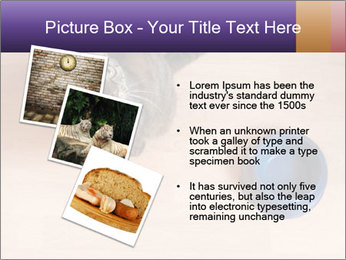 0000074125 PowerPoint Template - Slide 17