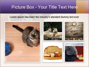 0000074125 PowerPoint Template - Slide 19