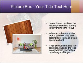 0000074125 PowerPoint Template - Slide 20