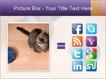 0000074125 PowerPoint Templates - Slide 21