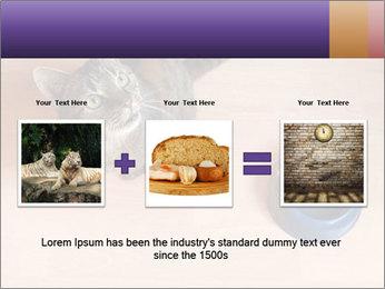 0000074125 PowerPoint Templates - Slide 22