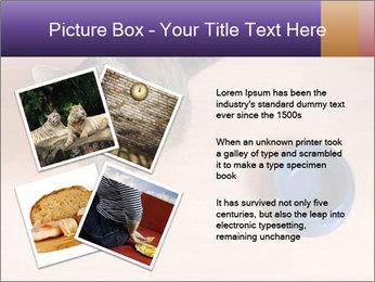 0000074125 PowerPoint Template - Slide 23