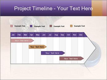 0000074125 PowerPoint Template - Slide 25