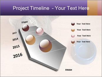 0000074125 PowerPoint Template - Slide 26