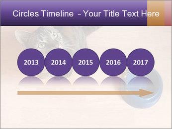 0000074125 PowerPoint Template - Slide 29