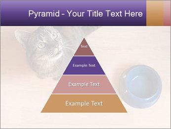 0000074125 PowerPoint Template - Slide 30