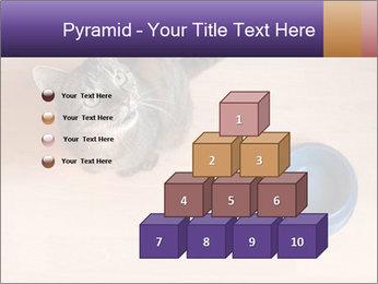 0000074125 PowerPoint Templates - Slide 31