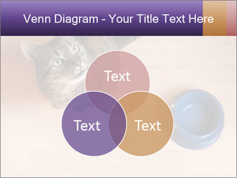 0000074125 PowerPoint Template - Slide 33