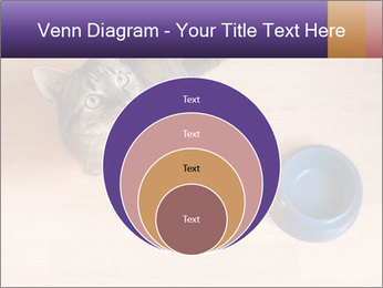 0000074125 PowerPoint Template - Slide 34