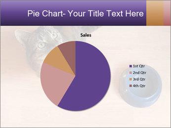 0000074125 PowerPoint Templates - Slide 36