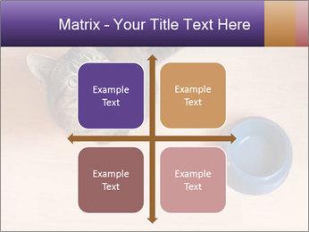 0000074125 PowerPoint Template - Slide 37
