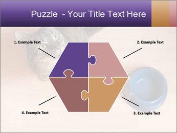 0000074125 PowerPoint Template - Slide 40