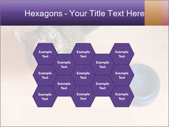 0000074125 PowerPoint Templates - Slide 44