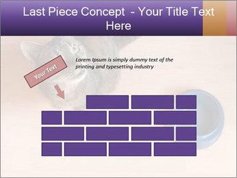 0000074125 PowerPoint Template - Slide 46