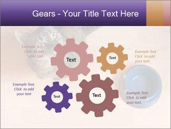 0000074125 PowerPoint Template - Slide 47