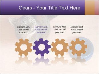 0000074125 PowerPoint Templates - Slide 48