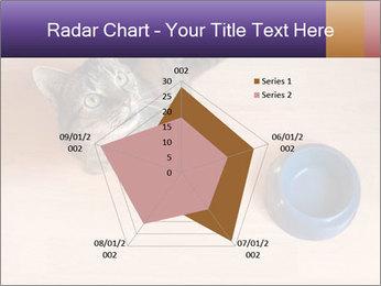 0000074125 PowerPoint Template - Slide 51