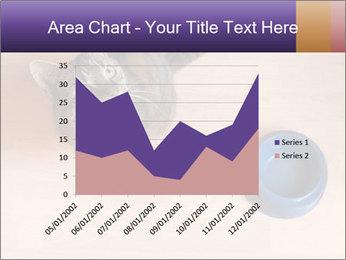 0000074125 PowerPoint Templates - Slide 53