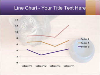 0000074125 PowerPoint Template - Slide 54
