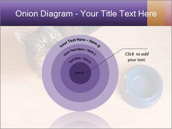 0000074125 PowerPoint Templates - Slide 61