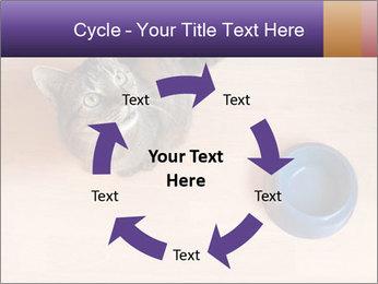 0000074125 PowerPoint Templates - Slide 62