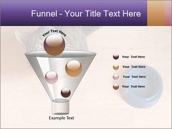 0000074125 PowerPoint Template - Slide 63
