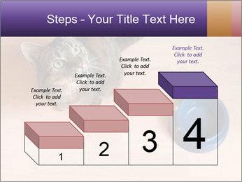 0000074125 PowerPoint Template - Slide 64