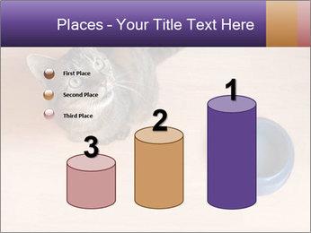 0000074125 PowerPoint Templates - Slide 65