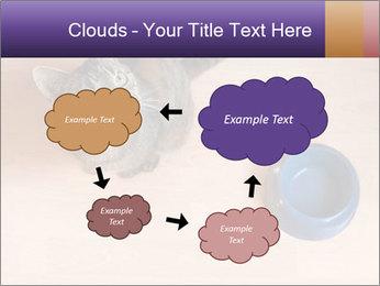 0000074125 PowerPoint Template - Slide 72