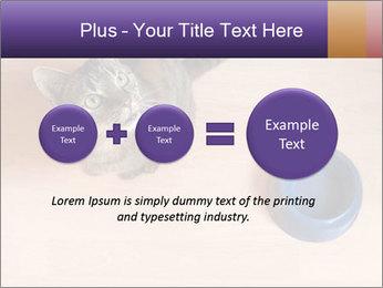 0000074125 PowerPoint Template - Slide 75