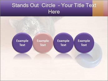 0000074125 PowerPoint Template - Slide 76