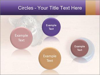 0000074125 PowerPoint Templates - Slide 77