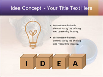 0000074125 PowerPoint Template - Slide 80