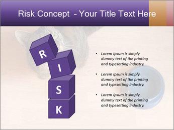 0000074125 PowerPoint Template - Slide 81