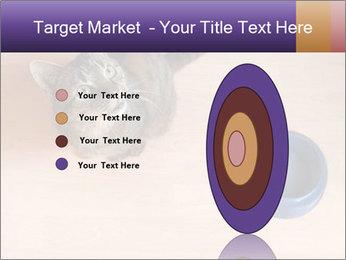 0000074125 PowerPoint Template - Slide 84
